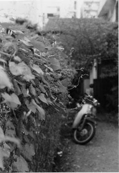 20040926z.jpg