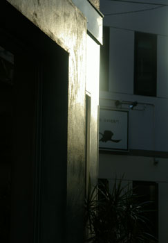 20041031z.jpg