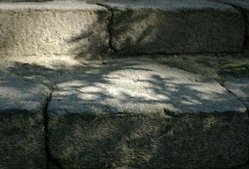 20041116z.jpg
