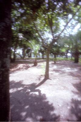 20050519z.jpg
