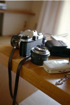 20050904z.jpg