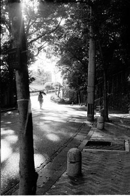 20051030z.jog.jpg