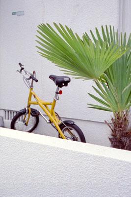 20060502z.jpg