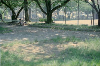 20060527z.jpg