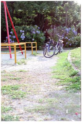 20060701y.jpg