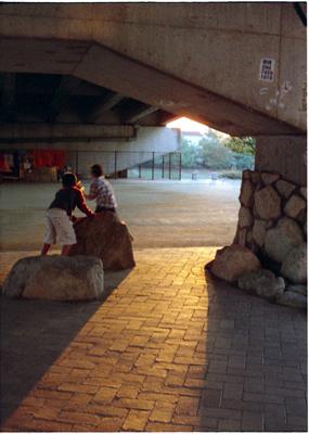 20061104z.jpg