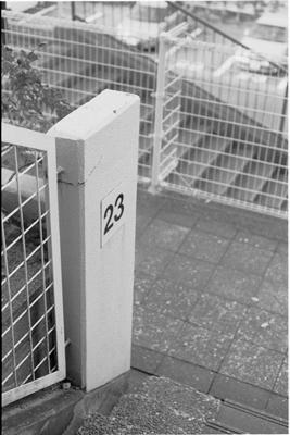 20061116z.jpg