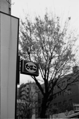20061219z.jpg
