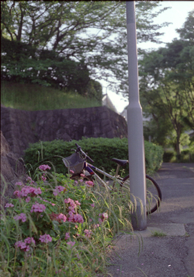 20071024y.jpg